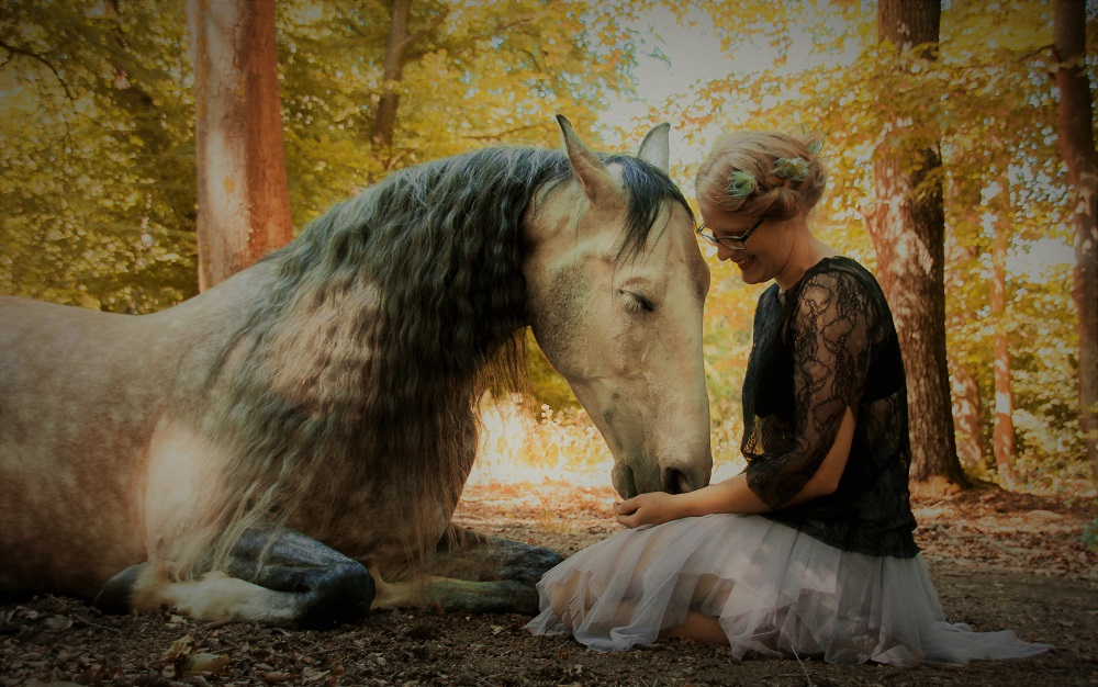 Horsemanship2_Harmony4Horses_Startseite